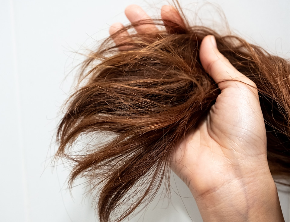 Lady with dry, dehydrated and tangled hair ends