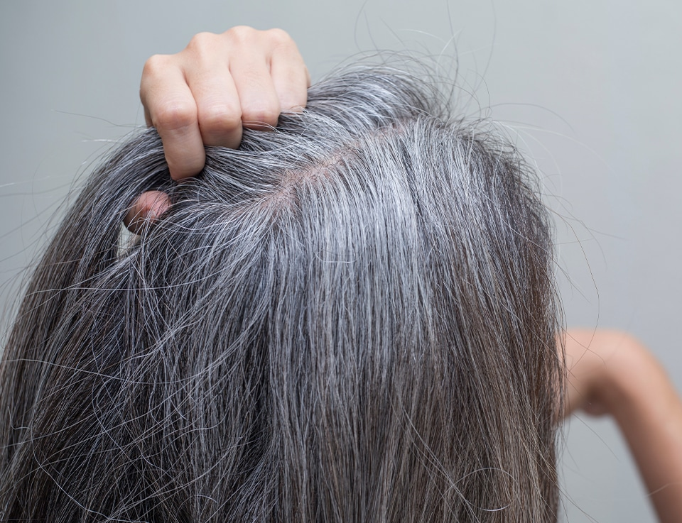 PHS HAIRSCIENCE®️ Signs of hair and scalp aging and how to deal with them